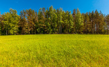 Как перевести земли сельхозназначения в ИЖС — принцип переоформления