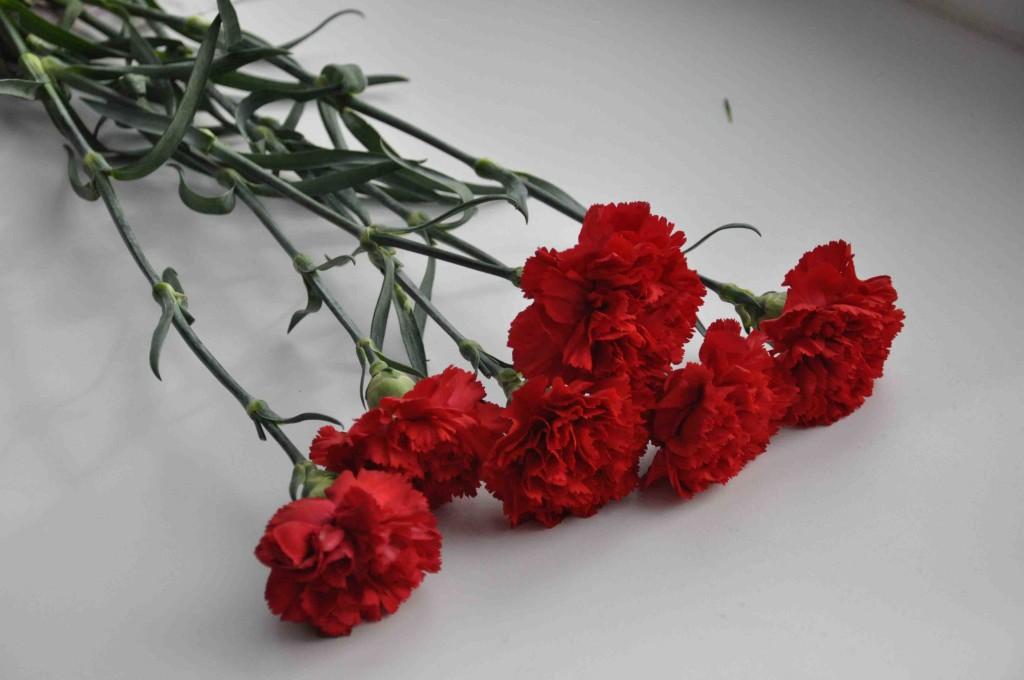 Как получить пособие на погребение куда обращаться